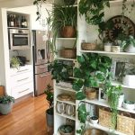 dream house kitchen plant wall open shelf shelving stainless steel wood floor wh...