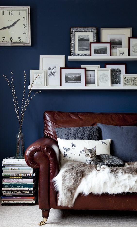 rich brown leather sofa in front of a navy accent wall
