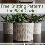 Free Knitting Patterns for Plant Cozies
