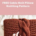 Cable Knit Throw Pillow: Free Knitting Pattern